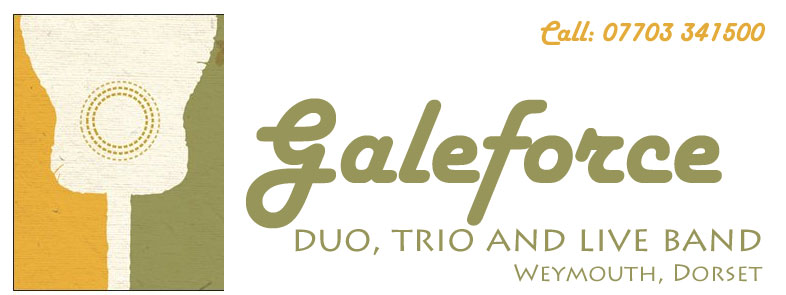 Galeforce Live Music Duo